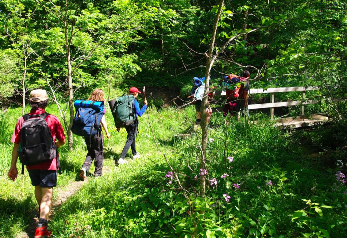 Hike Ontario Standard Hike Leader