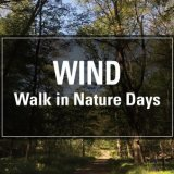 Drop-In Walk In Nature Sessions