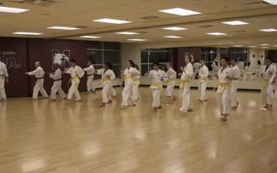 Karate - Spring/Summer All Levels